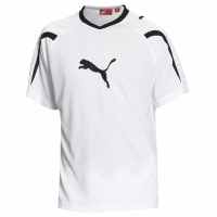Puma Power Cat 5.10 Herren Kinder Trainingsshirt Trikot...
